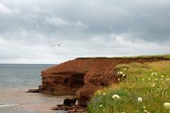 Klippen in Prince-Edward-Insel Stockfotografie
