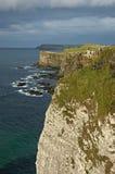 Klippen van Moher Ierland Royalty-vrije Stock Foto