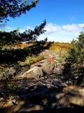 Klippen van Taylor Falls stock foto's