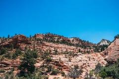 Klippen von Zion National Park, USA Stockfoto