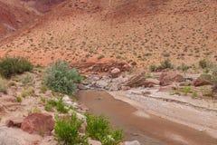 Klippen-Wildnis--Pariafluss-Schlucht AZ-UT-Paria Schlucht-Vermillion Stockfotos