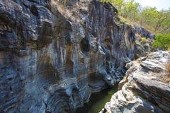Klippenfluss-Waldholz Stockfoto
