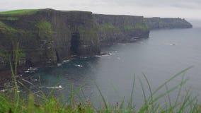 Klippor av Moher i Irland på en regnig dag stock video