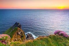 Klippor av Moher på solnedgången Royaltyfri Bild