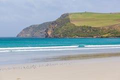 Klippor för strand och för kraftfull för uddeBridgewater härliga hav, Victoria, Australien Royaltyfria Foton