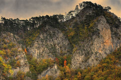 Klippor i kanjonfloden Tara nära ‡ för eviÄ för ` för Ä-urÄ en Tara Bridge, Montenegro - panorama Royaltyfri Bild