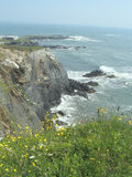 klippor Nova Scotia royaltyfri foto
