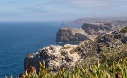 Klippor och blått hav i Algarven, Portugal med gröna växter Royaltyfri Foto