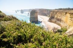 Klippor och buskar på tolv Apostels på den stora havvägen, Victoria, Australien Fotografering för Bildbyråer