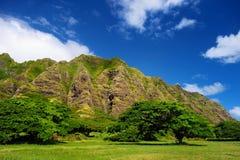 Klippor och träd av den Kualoa ranchen, Oahu Arkivfoto