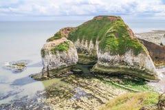 Klippor på lågvatten på det Flamborough huvudet Royaltyfri Fotografi