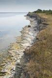 Klippor på Saaremaa Royaltyfri Bild