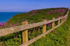 Klippor vid havet Royaltyfri Bild