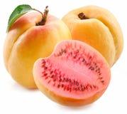 Klippt mogen vattenmelon för kött aprikos. Royaltyfri Foto