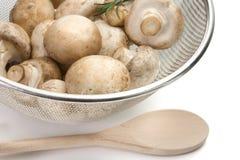 klippta nya champinjoner för champignon durkslag Arkivbild