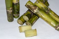 Klippta stycken av Sugar Cane Isolated On White Background royaltyfria foton