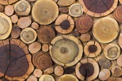 Klippte naturlig ekologisk mjuk kul?r brunt f?r runda tr?om?lade helt?ckande och gul stubbebakgrund, tr?d olika format f?r avsnit arkivbilder