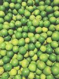 klippte svarta cirklar för bakgrund grön limefrukt Fotografering för Bildbyråer