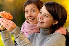 klipska flickvänner två för agaric Royaltyfri Fotografi
