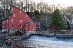 Klipskt fiske på det rött maler Fotografering för Bildbyråer