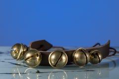 Klirr på ett läder sätter band framme av blå bakgrund arkivbild