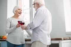 Klirrende Gläser der begeisterten älteren Paare stockbild