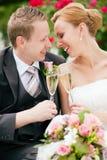 Klirrende Gläser der Jungvermähltenpaare Stockfoto