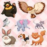 Klistermärkedesign för vilda djur på rosa bakgrund royaltyfri illustrationer