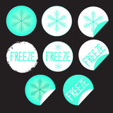 Klistermärkeetikettprodukter med snöflingan Royaltyfri Bild