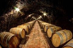 källarecognacen flankerar oaken där wine Fotografering för Bildbyråer