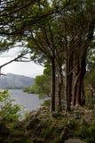 Kllarney jezior krajobraz Obraz Stock
