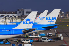 KLM-Jets in Schiphol Stockfotos
