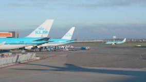 KLM planes parked at Schiphol airport. Amsterdam - 2018: KLM planes parked at Schiphol airport with another plane passing in the background stock video
