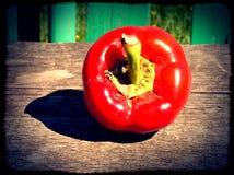 Klocka för röd peppar Arkivfoto
