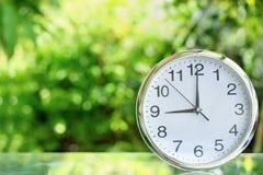 Klocka i trädgård Royaltyfri Bild