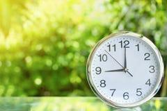 Klocka i trädgård Arkivfoton