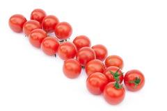 Klocka tomater på vinrankan Royaltyfria Foton