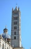 Klocka torn av domkyrkan av Siena - Italien Royaltyfri Foto