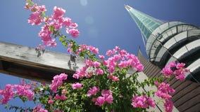 Klocka torn med blommor arkivfilmer
