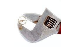 Klockakugghjul på rörskiftnyckeln för justerbar plattång Royaltyfri Fotografi