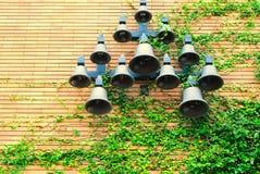 Klockor hängs på väggen som klättras av växter Arkivbild