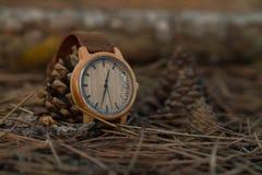 Klockor i träna Royaltyfria Bilder