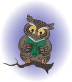 klok owl Royaltyfri Foto