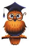 klok owl royaltyfri illustrationer