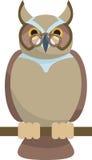 klok owl Royaltyfria Bilder