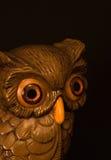 klok owl Fotografering för Bildbyråer