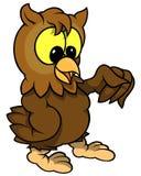 klok owl Royaltyfri Fotografi