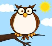 Kloka Owl On Tree Cartoon Character Royaltyfria Bilder