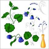 Klokbloemen met bladeren Stock Foto