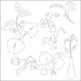 Klokbloemen met het Art. van de bladerenlijn Stock Afbeeldingen